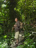 Man collecting wood in jungle, looking up