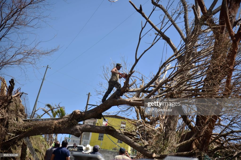 TOPSHOT - A man cuts a tree uprooted by Hurricane Maria in a street in Yabucoa, in the eastern part of storm-battered Puerto Rico, on September 28, 2017. A week after the Category Four storm stuck, the White House said US President Donald Trump had made it easier for fuel and water supplies to arrive to the ravaged island of 3.4 million US citizens. /