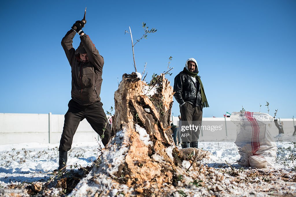 A man cuts wood in a Syrian refugees camp in Azaz, near the Turkish border, on January 10, 2013 after snow falls. Snow carpeted Syria's war-torn cities but sparked no let-up in the fighting, instead heaping fresh misery on a civilian population already enduring a chronic shortage of heating fuel and daily power cuts.