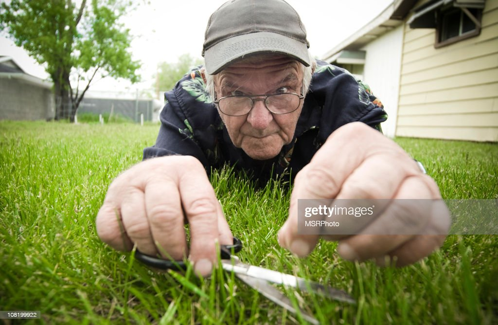 Man Cutting Grass with Scissors : Stock Photo