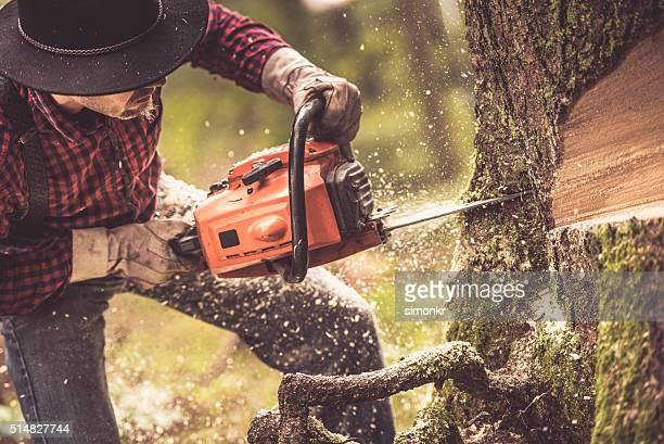 Mann Schneiden Baum
