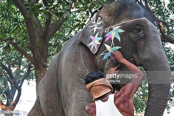 A man decorating elephants in Sonepur Cattle Fair
