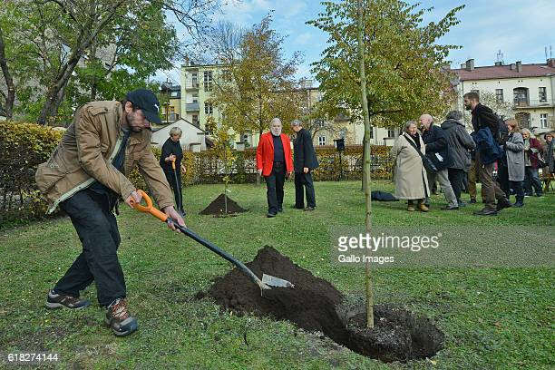 A man digging the ground during the ceremony of planting Wislawa Szymborskaâs acacia on October 24 2016 near Dworek Lowczego in Krakow Poland...