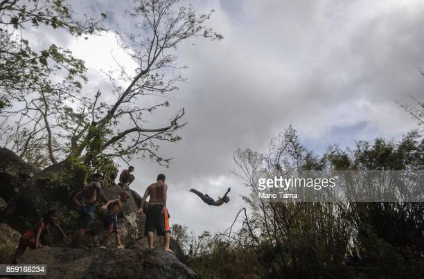 A man dives into the Espiritu Santo river in a hurricanedamaged section of forest before heavy afternoon rains more than two weeks after Hurricane...