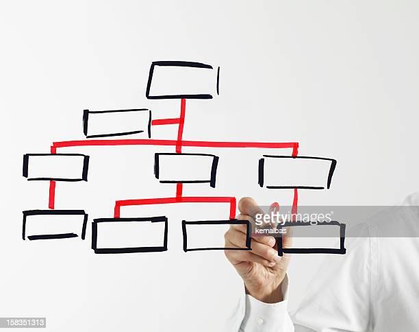 A man draws a blank organization chart on glass