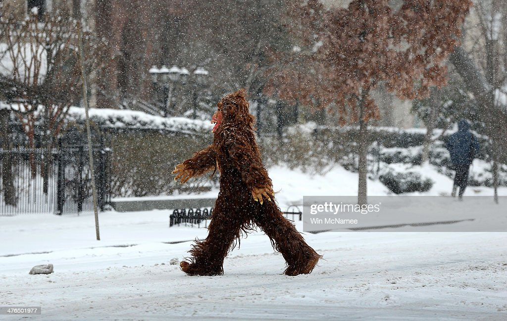 A man dressed in a gorilla costume crosses a snowy street March 3, 2014 in Washington, DC. The Washington area has been hit by repeated snow storms throughout the winter.