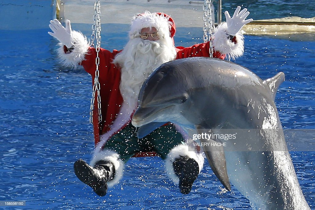 A man dressed in a Santa Claus costume poses with a dolphin, at the animal exhibition park Marineland, on December 19, 2012 in Antibes, southeastern France. AFP PHOTO / VALERY HACHE