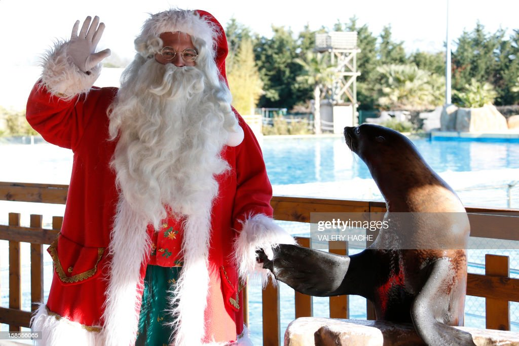 A man dressed in a Santa Claus costume poses with a sea lion at the animal exhibition park Marineland, on December 19, 2012 in Antibes, southeastern France.