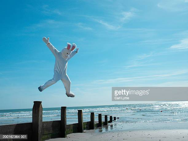 Man dressed in rabbit suit leaping over groyne on beach