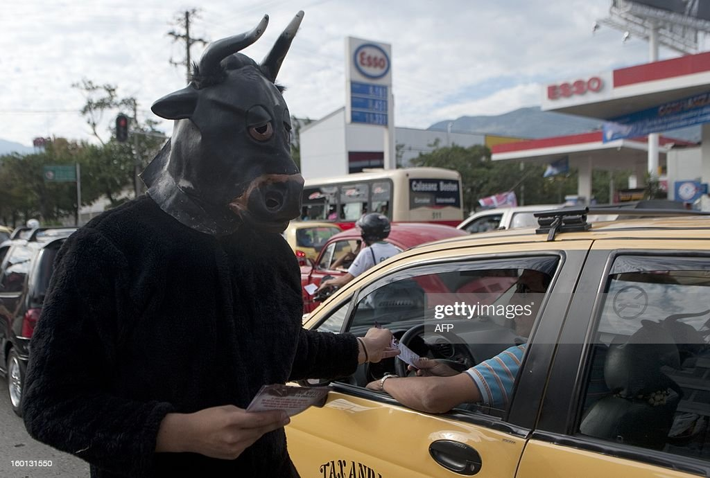 A man dresses as bull protest against of the bullfight outside at La Macarena bullring on January 26, 2013 in Medellin, Antioquia deparment, Colombia. AFP PHOTO/Raul ARBOLEDA