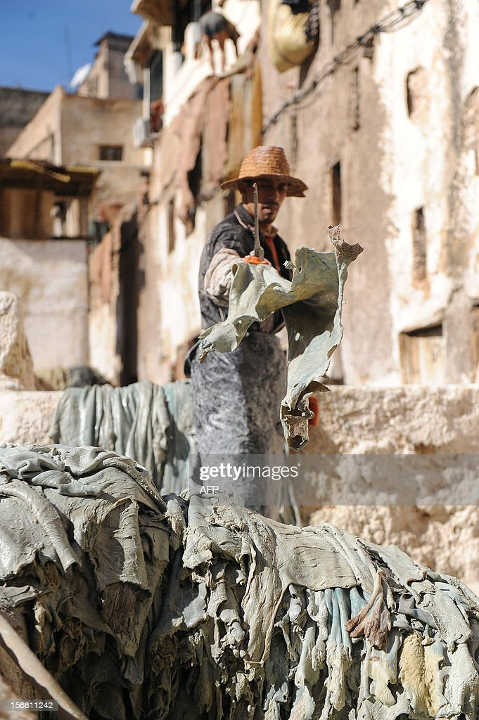 A man dries cut sheepskins at the tanneries in Fes on November 21, 2012. AFP / PHOTO / FADEL