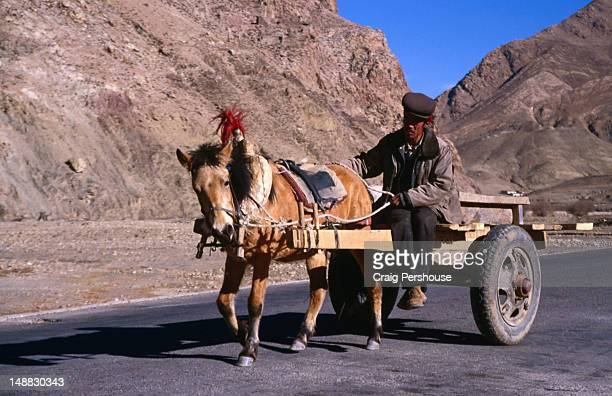 Man driving a horse and cart near Sakya, in the Tsang district.