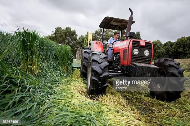 Homme de conduire un tracteur à la ferme