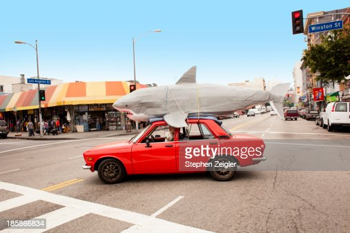 Man driving car with papier-mache shark on roof