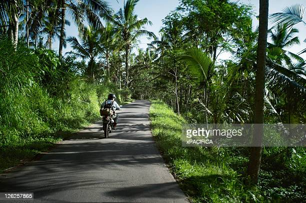 A man driving down a road in Bali on his scooter.