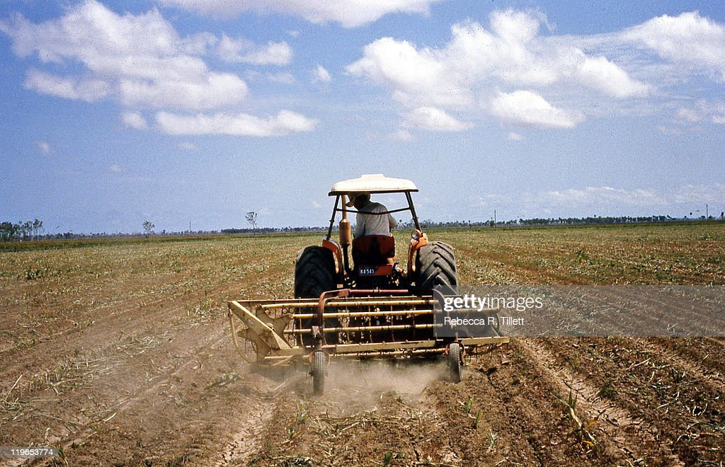Man driving tractor in field : Stock Photo