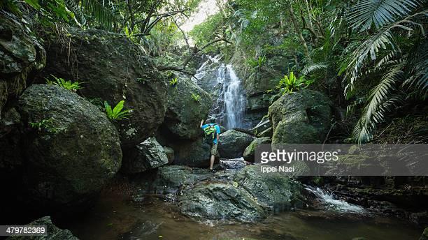 Man enjoying a waterfall in tropical rainforest