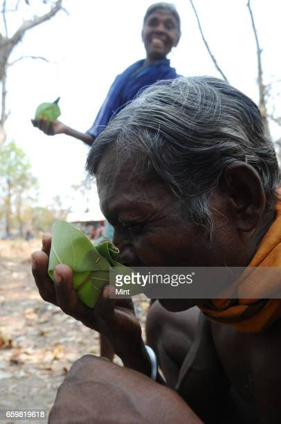 A man enjoying local drink called taadi in Bastar a maoist area on March 25 2010 in Chhattisgarh India