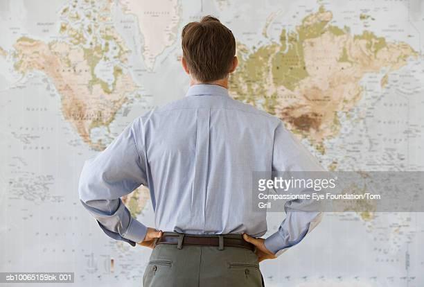 Man facing world map, rear view