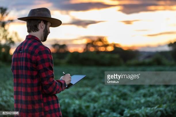 Man Farmer Using Digital Tablet in Field at Sunset