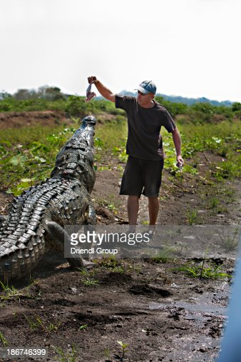 alligator latin singles Free online dating in alligator for all ages and ethnicities, including seniors, white, black women and black men, asian, latino, latina, and everyone else forget classified personals, speed dating, or other alligator dating sites.