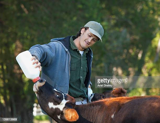 Man feeding bottle to calf