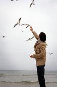 Man Feeding Gulls