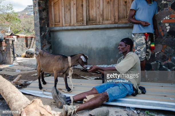 A man feeds a goat September 22 2017 in Canefield on the Caribbean island of Dominica four days after the passage of Hurricane Maria Maria previously...