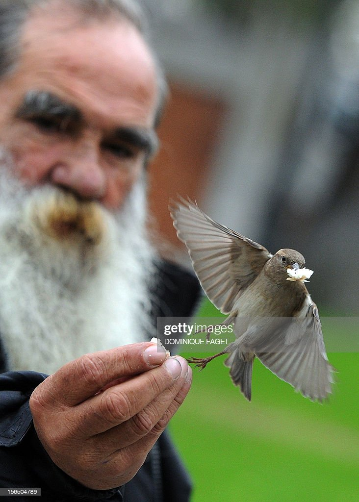 A man feeds a sparrow in the garden of El Prado museum in Madrid on November 16, 2012. AFP PHOTO / DOMINIQUE FAGET