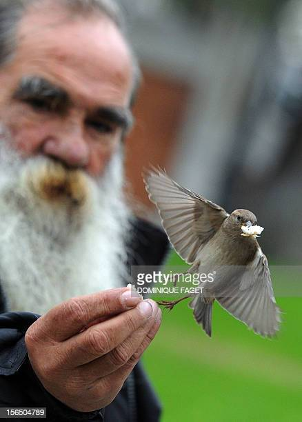 A man feeds a sparrow in the garden of El Prado museum in Madrid on November 16 2012 AFP PHOTO / DOMINIQUE FAGET