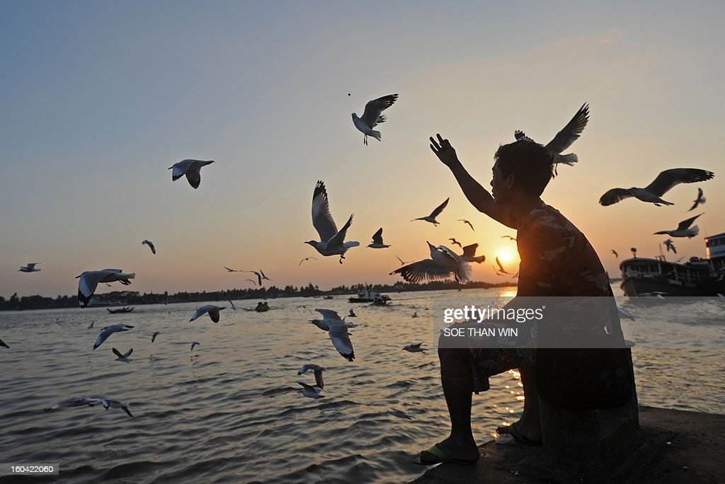 A man feeds birds as the sun sets at Yangon river in the late evening in Yangon on January 31, 2013. Myanmar has undergone dramatic changes since polls in 2011 that saw the election of a nominally civilian government as the regime surprised observers with a series of reforms, welcoming democracy leader Aung San Suu Kyi's party back into mainstream politics and releasing hundreds of political prisoners. AFP PHOTO / Soe Than WIN