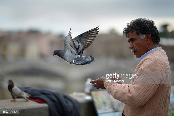 A man feeds pigeons on March 25 2013 in Rome Italy Pope Francis yesterday led his first mass of Holy Week as pontiff by celebrating Palm Sunday in...