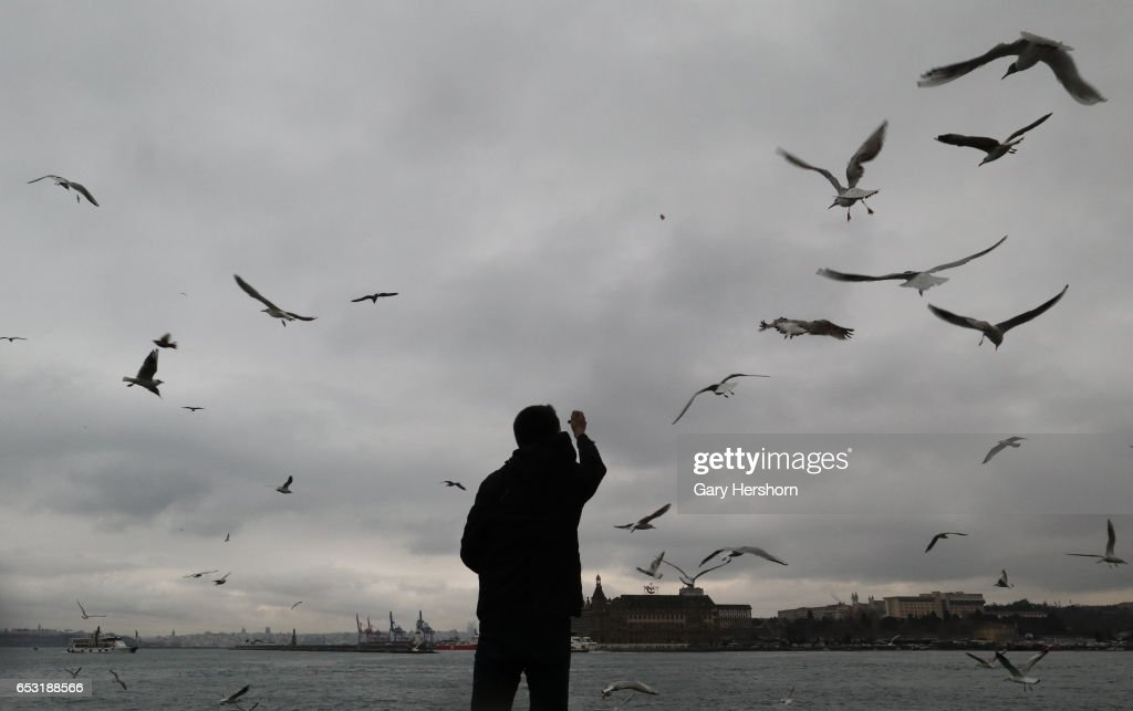 A man feeds seagulls above the Bosphorus on March 13, 2017 in Istanbul, Turkey.