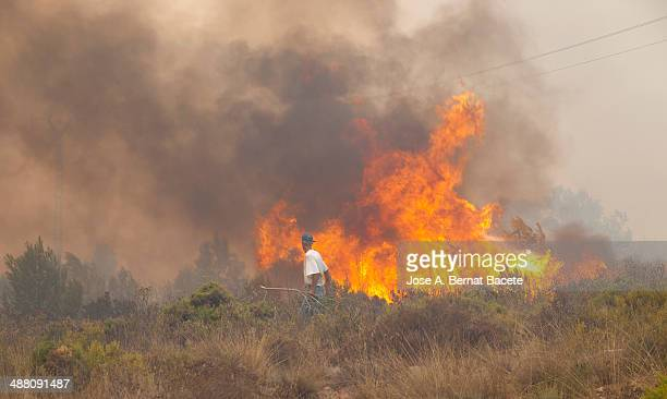 Man fighting the fire from a forest fire near
