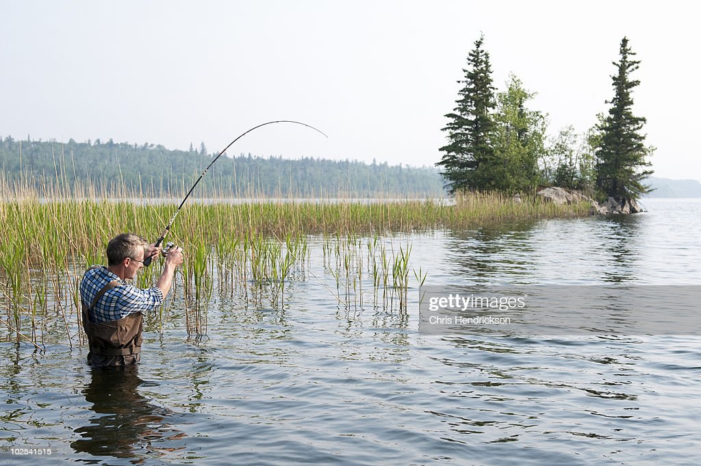 Man fishing in lake wearing chest waders. : Stock Photo