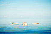 Man Floats in Tranquil Blue Waters