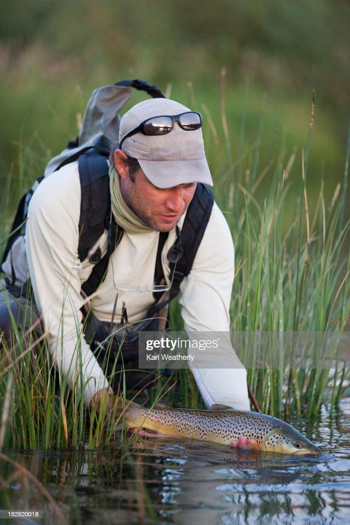 Man fly fishing at Silver Creek : Stock Photo