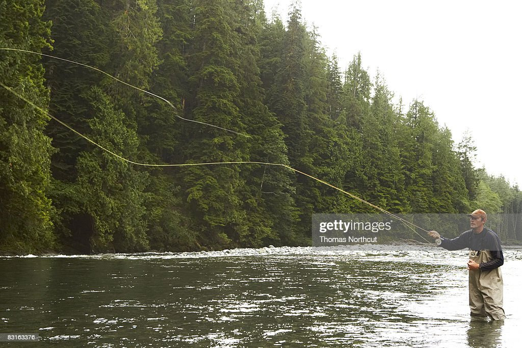 Man fly fishing in river  : Stock Photo
