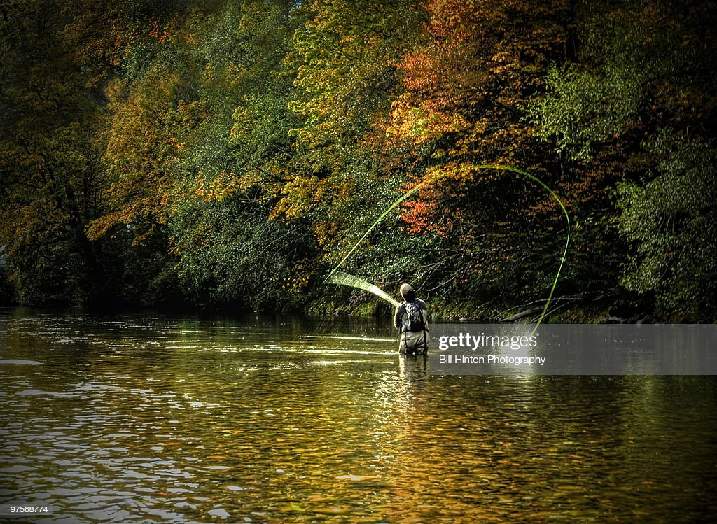 Man Fly Fishing : Stock Photo