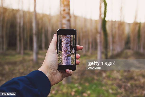 Man from personal point of view playing with perspective holding a smartphone with screen fitting on the nature landscape.
