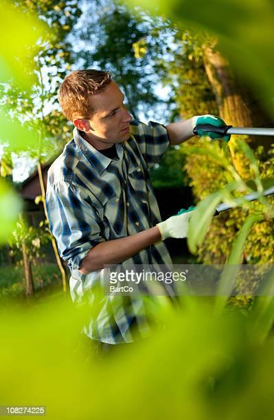 Mann Gartenarbeit und Stutzen Büschen mit Verzierung