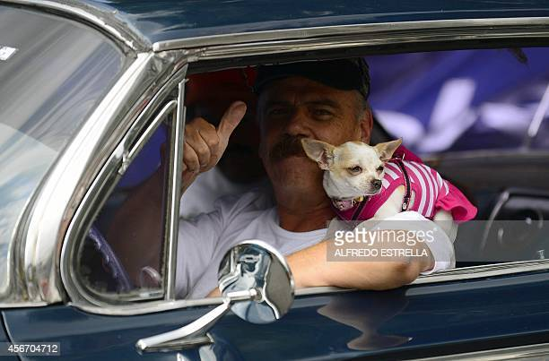 A man gives the thumb up as he drives his classic car with his dog in a parade during an attempt to get a new Guinness record at Reforma avenue in...