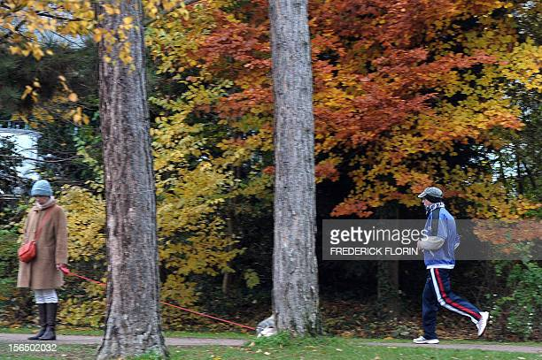 A man goes jogging at the Orangerie's park in Strasbourg eastern France on November 15 2012 The city of Strasbourg is experimenting a 'sports on...