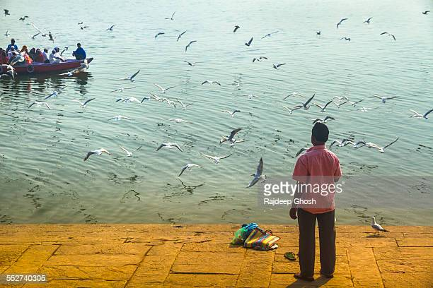 Man gulls and boat in varanasi
