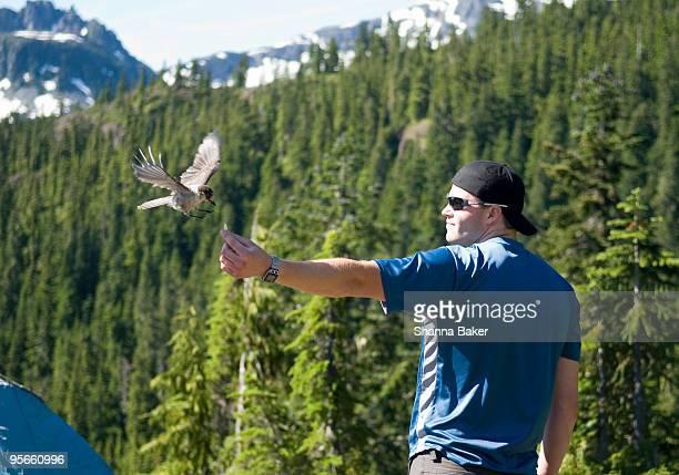 Man hand feeding a wild bird
