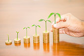 Man hand holding tree growing putting on money coin stack arranged as a graph on wooden table, concept of money growth and saving money