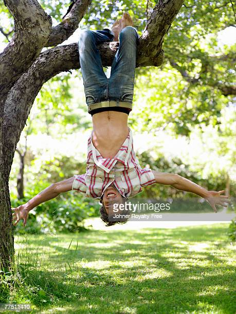 A man hanging upside down on a tree branch Stockholm Sweden.