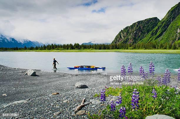 Man hauls kayak and gear up the feeder river to Bear Lake and Bear Glacier, Alaska.