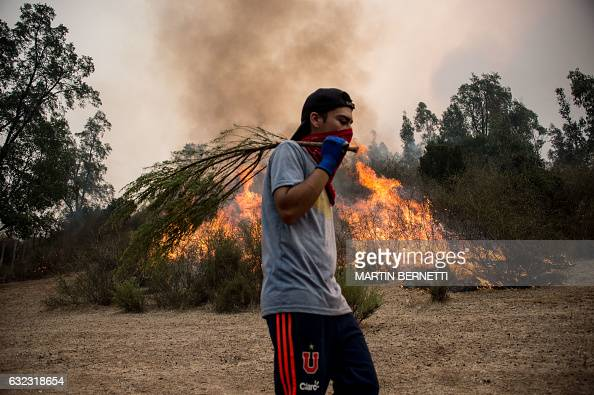 TOPSHOT A man helps put out a fire in Pumanque 140 km south of Santiago on January 21 2017 The Chilean government declared a state of emergency in...