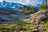 Hiker walking in a trail in Mount Baker area.